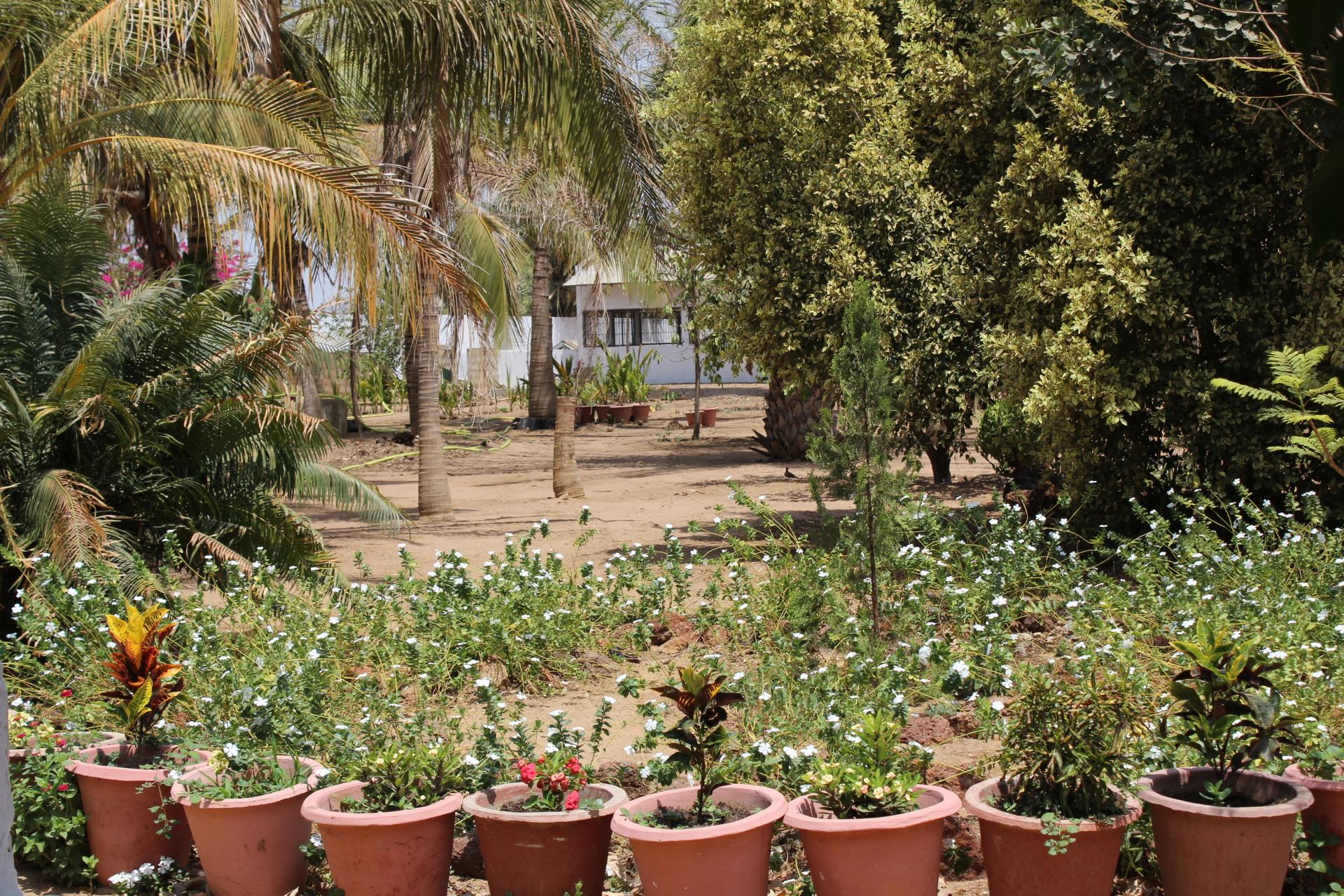 Une vue sur la ferme Kaydara